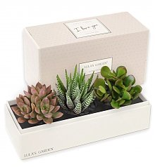 Home Decor: I Love You Jewel Garden